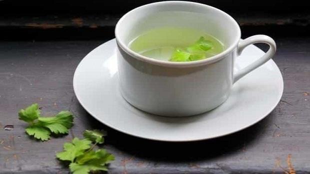 Infusión de cilantro fresco